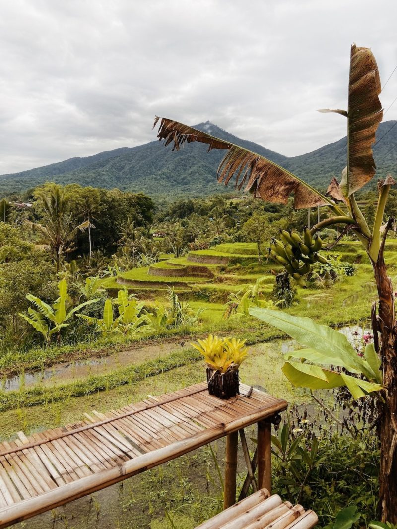 Jatiluwih, one of the best rice terraces in Bali