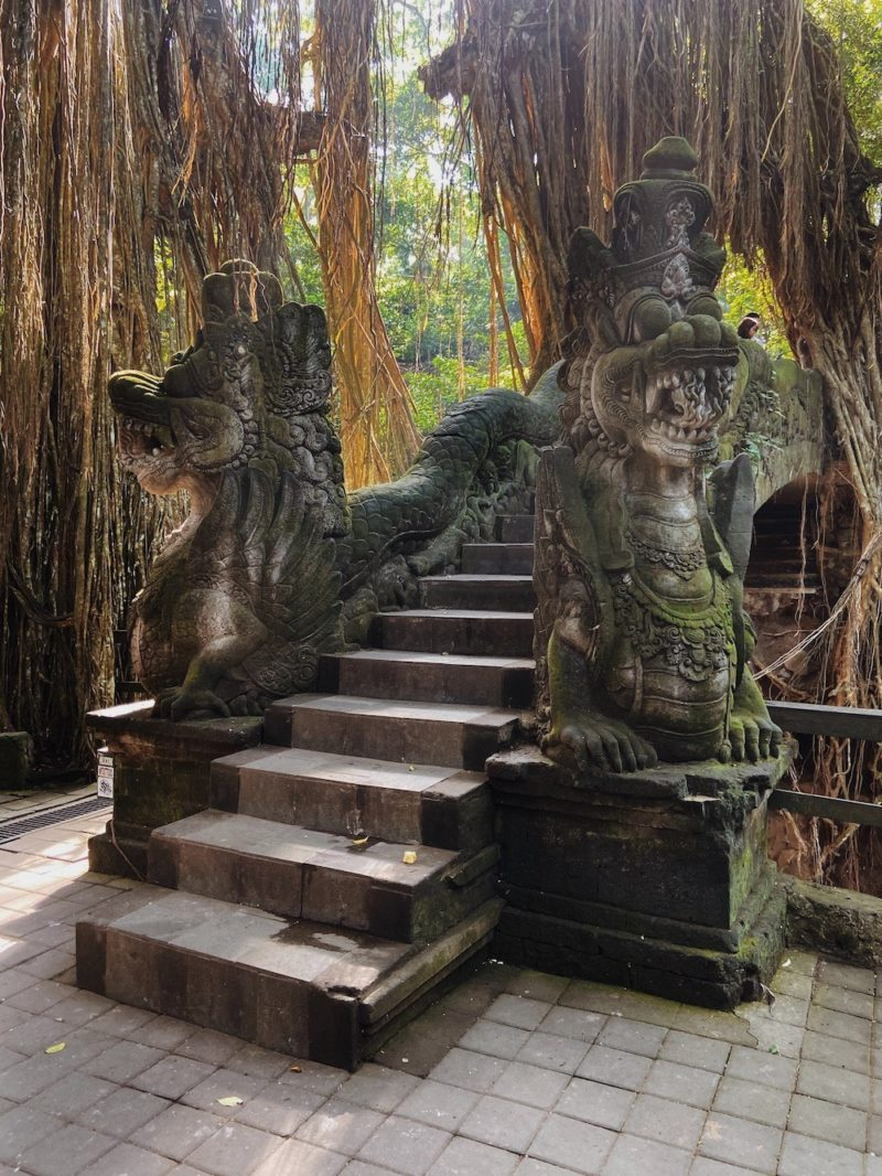 The Monkey Sanctuary in Ubud